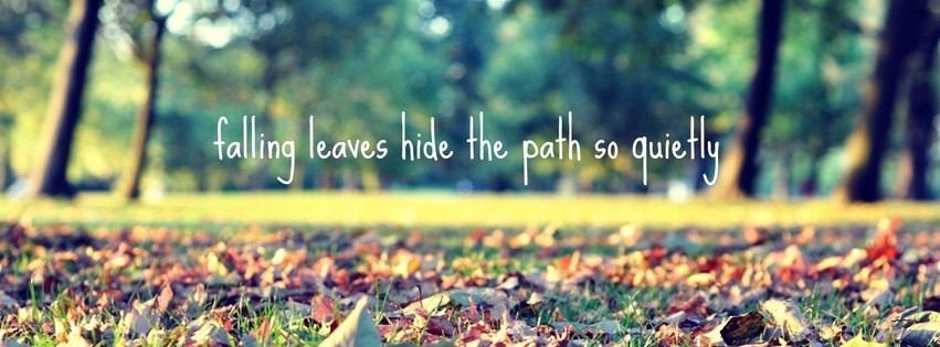 Fall Season Quotes - Falling Leaves Quotes And Sayings