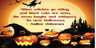 Funny Quotes And Sayings About Halloween Day