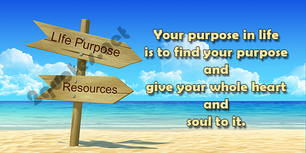 Finding Your Purpose In Life Quotes And Sayings
