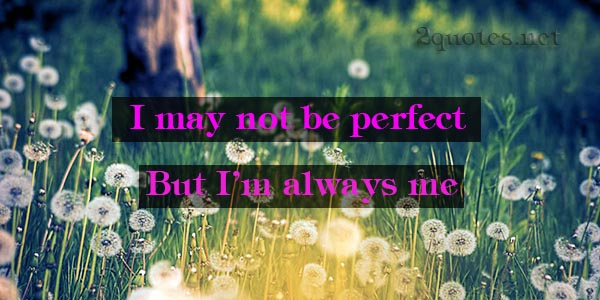 I May Not Be Perfect Quotes And Sayings