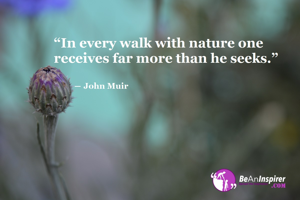 The Best Nature Quotes