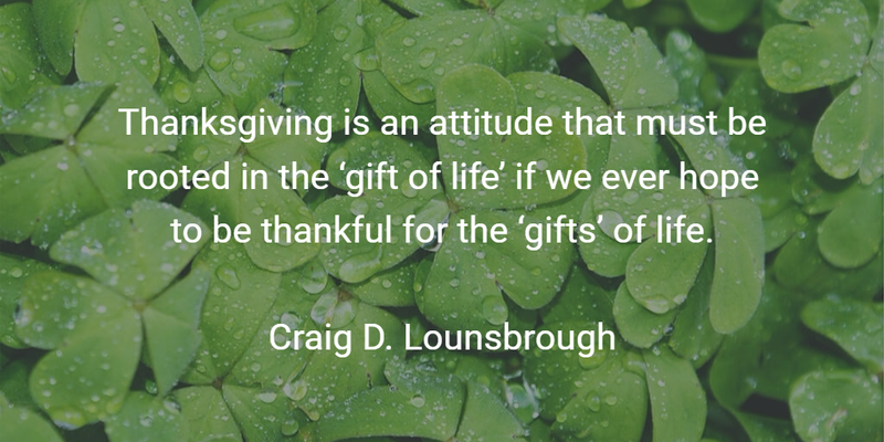 12 Gift of Life Quotes Worth Sharing and Remembering