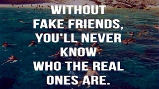 Fake Friend Quotes With Image