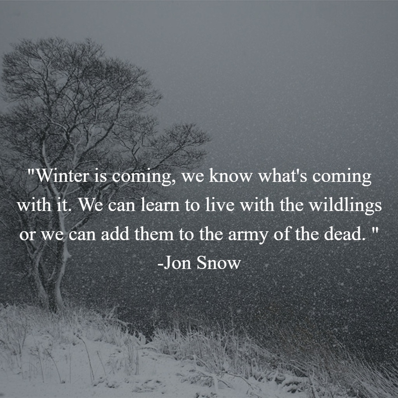 Quotes about winter beauty